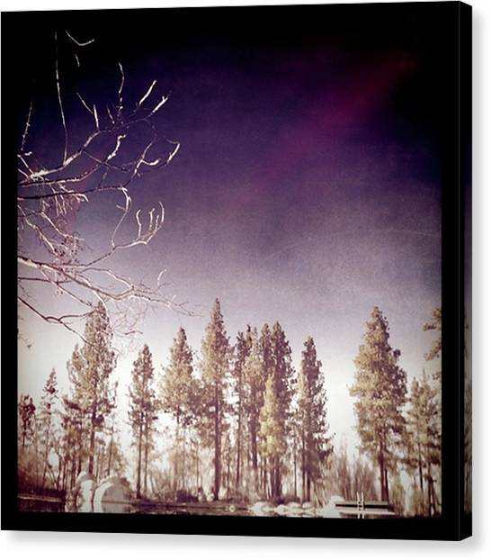 Mirrored On The Lake Canvas Print