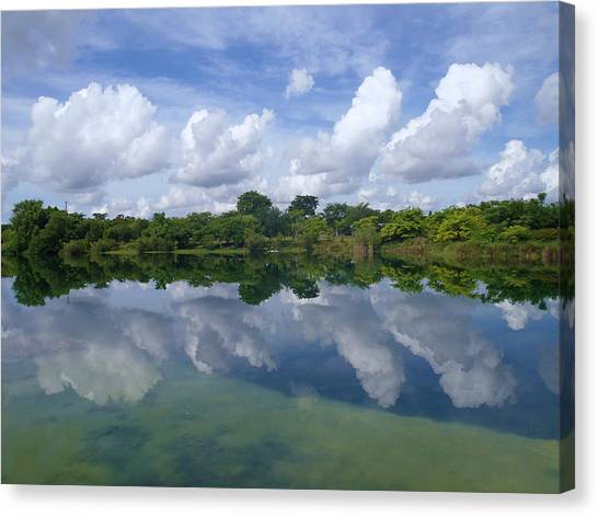 Mirrored Canvas Print by Tammy Chesney