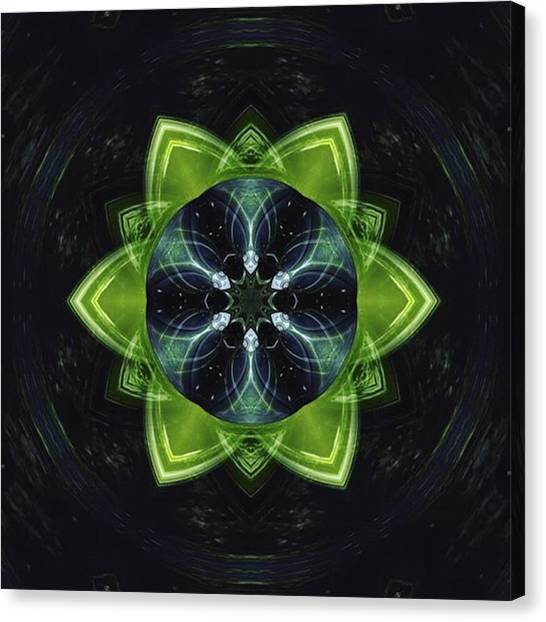 Canvas Print - #mirrorlab #treelights by Jessica Louis