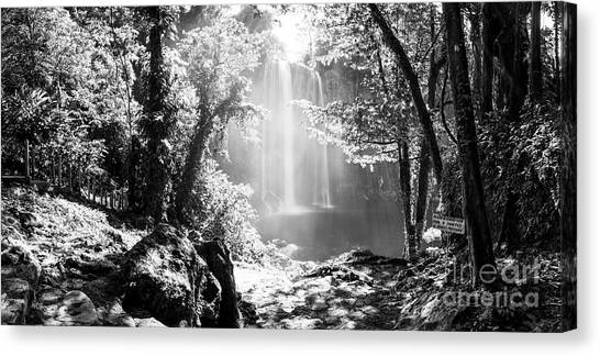Canvas Print featuring the photograph Misol Ha Waterfall Mexico Black And White by Tim Hester