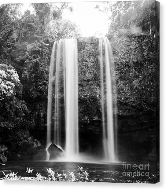 Canvas Print featuring the photograph Misol Ha Waterfall Palenque Black And White by Tim Hester