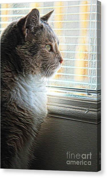 Miss Kitty  Canvas Print