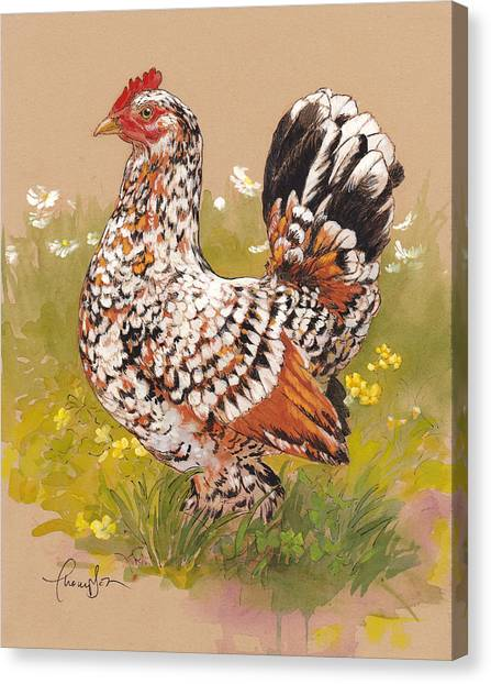 Chicken Farms Canvas Print - Miss Millie Fleur by Tracie Thompson