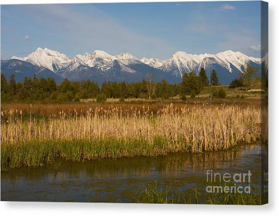 Mission Mountain Glory Canvas Print