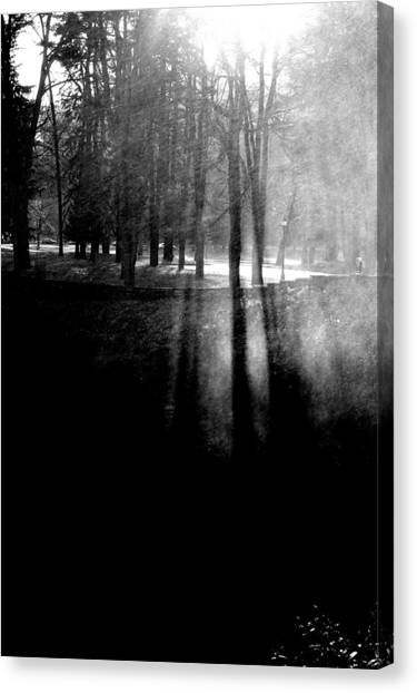 Mist An Black Canvas Print