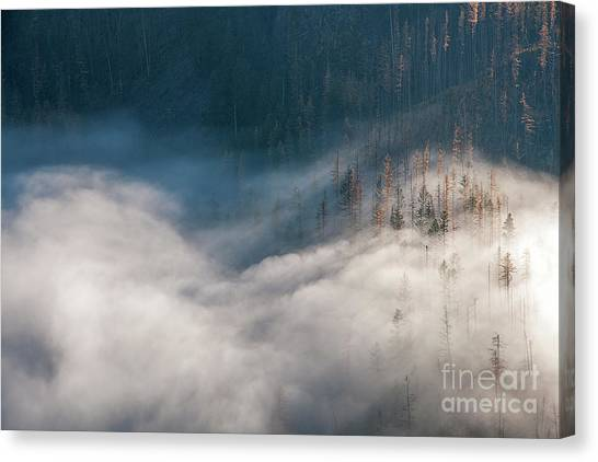 Mist And Shadow Canvas Print