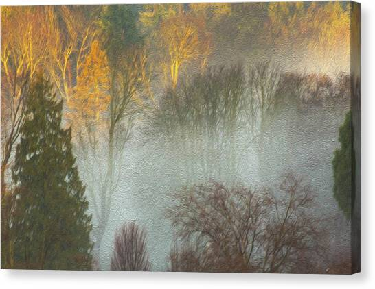 Mist In The Park Canvas Print