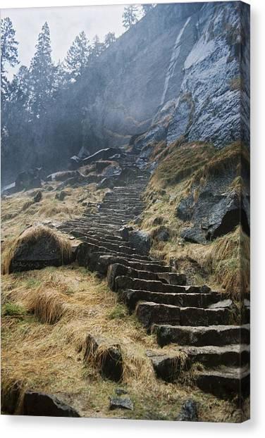 Mist Trail Canvas Print by Richard Verkuyl