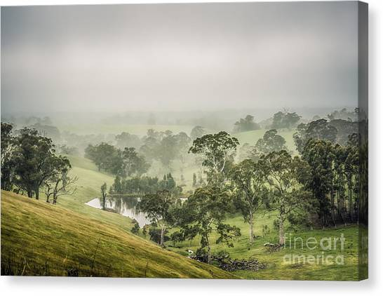 Canvas Print featuring the photograph Mist Valley by Ray Warren