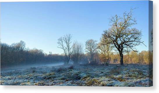 Misty Clearing Canvas Print
