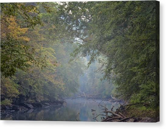 Misty Creek Canvas Print by Dale Wilson