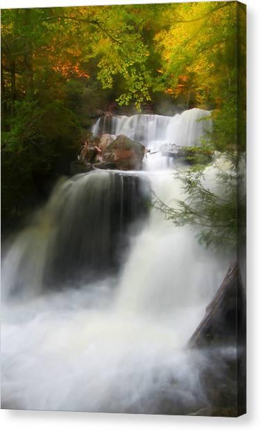 Misty Fall Canvas Print