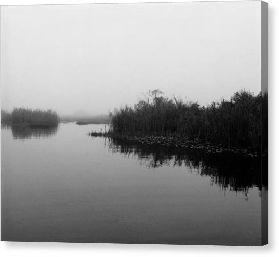 Misty Glades Canvas Print by Cindy Gregg