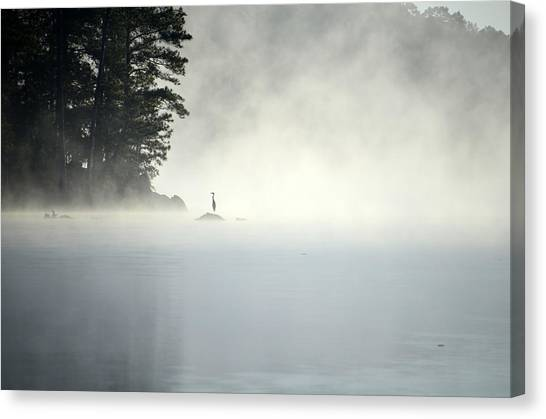 Misty Heron Canvas Print