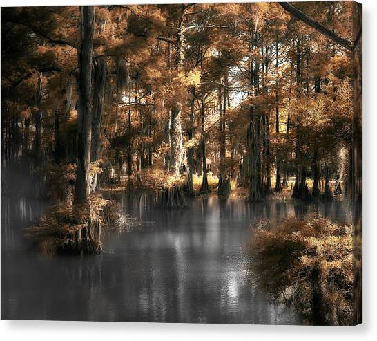 Misty Lake Canvas Print by Cecil Fuselier
