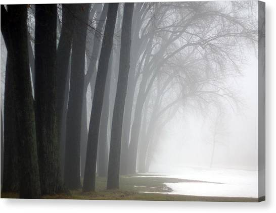 Misty Moments Canvas Print