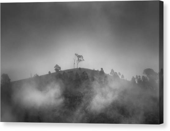 Black Top Canvas Print - Misty Moods by Az Jackson