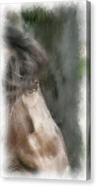 Misty Morn Canvas Print by Elzire S