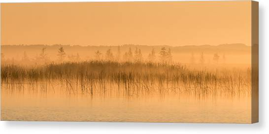 Misty Morning Floating Bog Island On Boy Lake Canvas Print