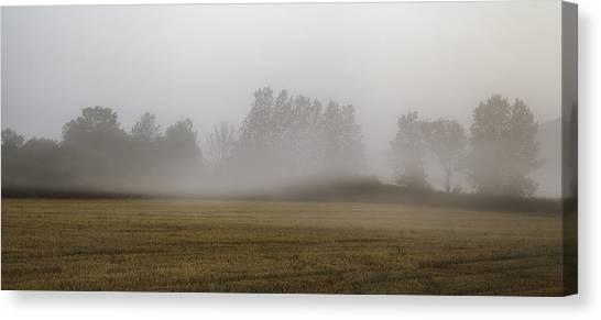 Etherial Canvas Print - Misty Morning by Nigel Jones