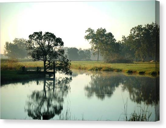 Misty Morning Pond Canvas Print