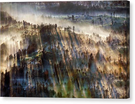 Canvas Print featuring the photograph Misty Morning by Pradeep Raja Prints