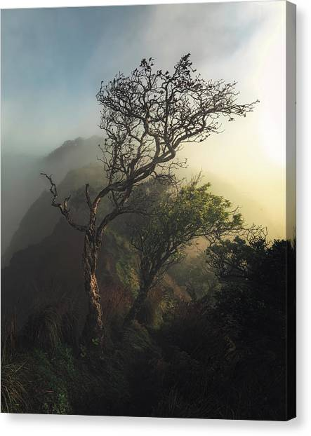 Cathedrals Canvas Print - Misty Na Pali by Tor-Ivar Naess