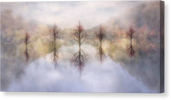 Foggy Forests Canvas Print - Misty Sunrise by Debra and Dave Vanderlaan