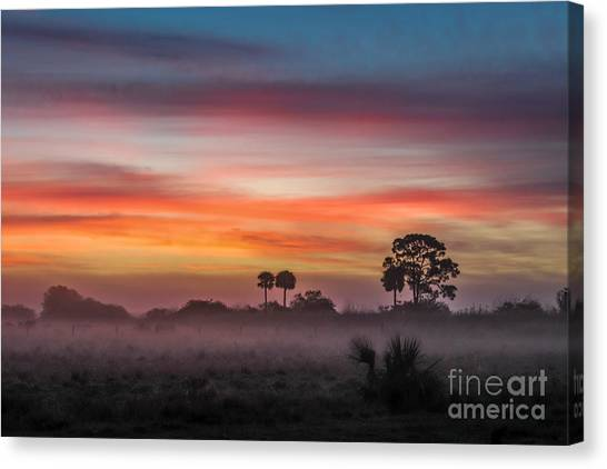 St. Lucie County Canvas Print - Misty Sunrise by Liesl Walsh