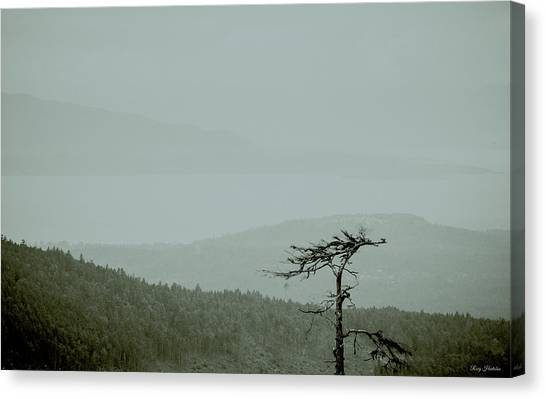 Misty View Canvas Print