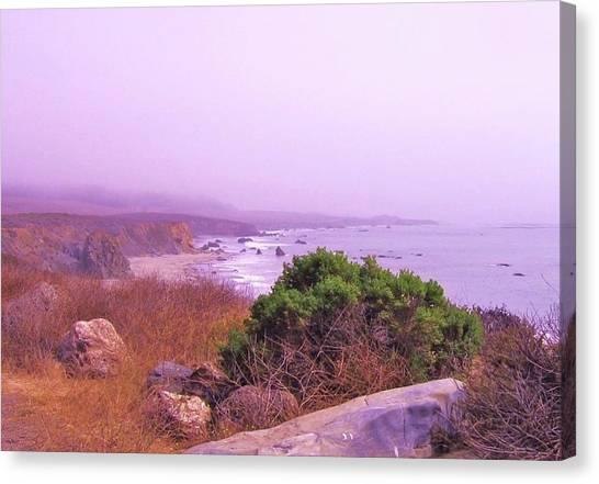 Canvas Print - Misty West Coast, Ca by Slawek Aniol