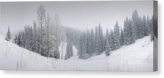Misty Winter Panorama Canvas Print