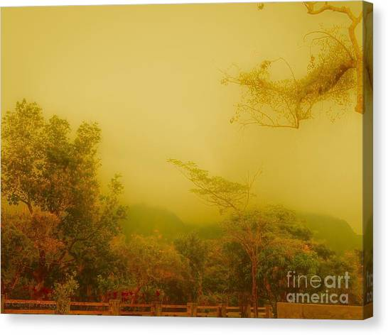 Misty Yellow Hue- El Valle De Anton Canvas Print
