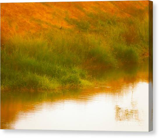 Misty Yellow Hue -lone Jacana Canvas Print