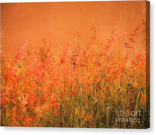 Misty Yellow Hue- Pink Blooms Canvas Print