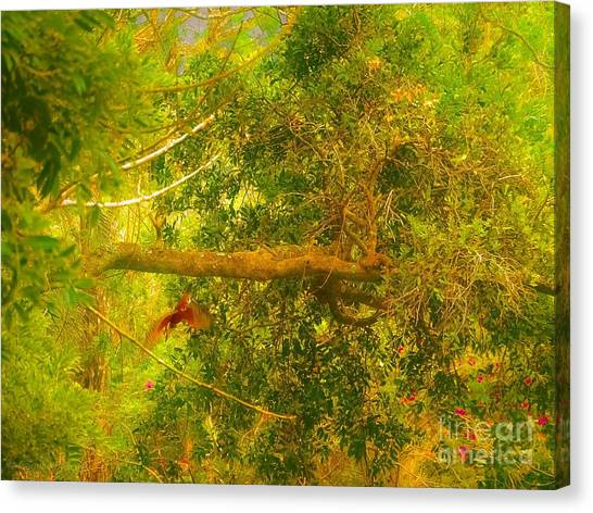 Misty Yellow Hue- Ringed Kingfisher In Flight Canvas Print