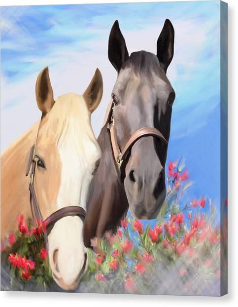 Miwok Horses Canvas Print