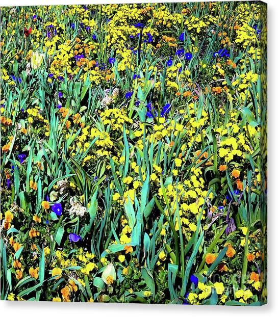 Mixed Flower Garden 515 Canvas Print