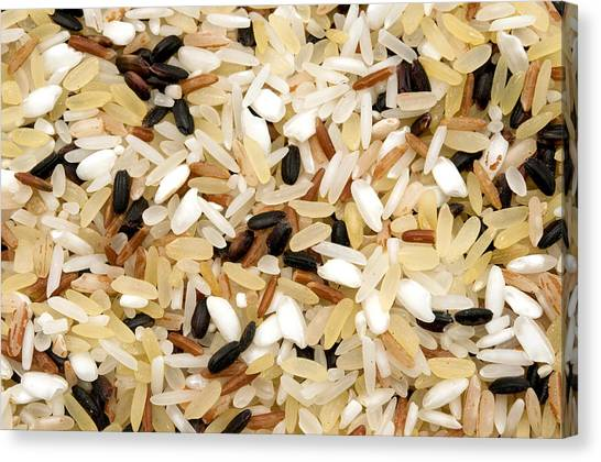 Mixed Rice Canvas Print