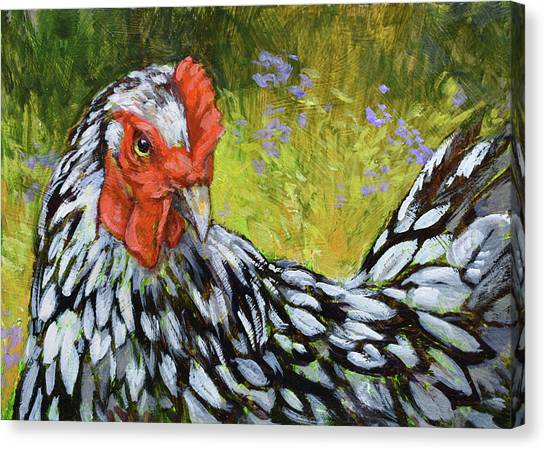 Chicken Farms Canvas Print - Miz Lacey Wyandoote by Tracie Thompson