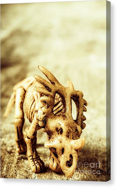Historical Canvas Print - Model Styracosaurus Skeleton by Jorgo Photography - Wall Art Gallery