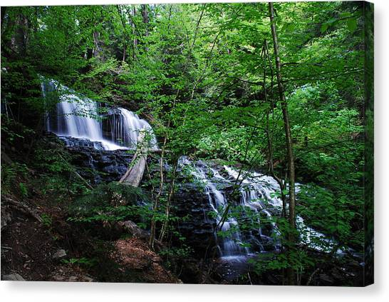 Mohawk Falls Canvas Print by Eric Harbaugh