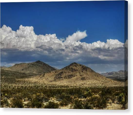 Mojave 020 Canvas Print by Lance Vaughn