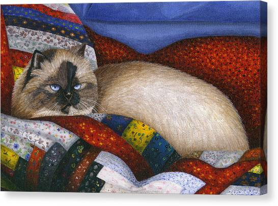 Himalayan Cats Canvas Print - Molly - A Rescue Cat - Close Up by Carol Wilson