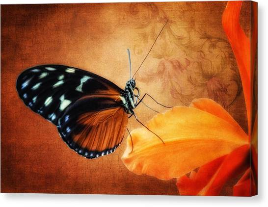 Orchid Canvas Print - Monarch Butterfly On An Orchid Petal by Tom Mc Nemar