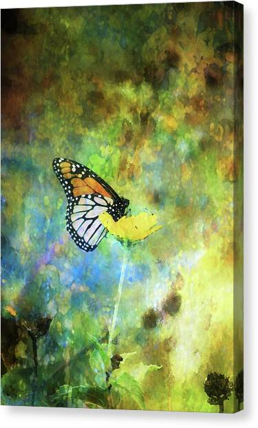 Monarch In Azure And Gold 5647 Idp_2 Canvas Print