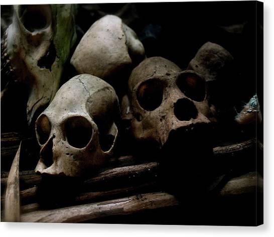 Apes Canvas Print - Monkey Skulls Amazon by Matt Mather