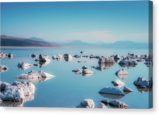 Mono Mirror Canvas Print