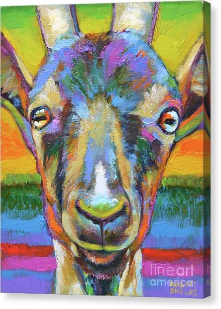 Monsieur Goat Canvas Print