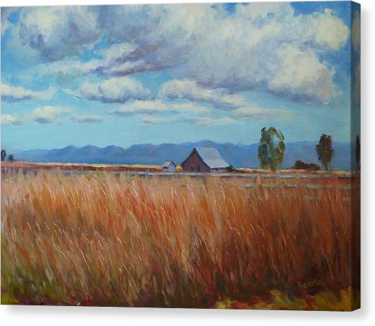 Montana Prairie In The Fall Canvas Print